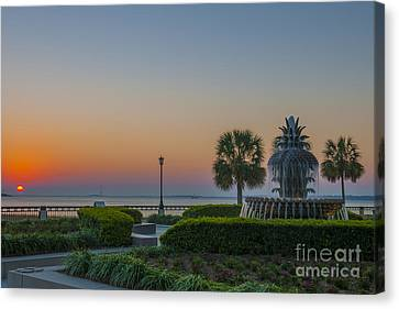 Canvas Print featuring the photograph Dawns Light by Dale Powell