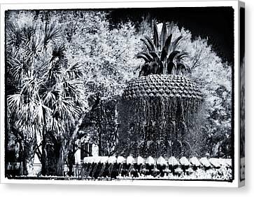Pineapple In Charleston Canvas Print by John Rizzuto