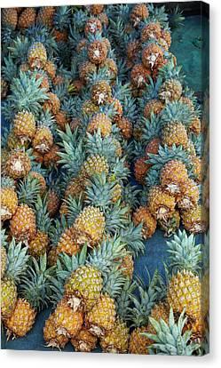 Pineapple Stall At Suva Municipal Canvas Print by David Wall