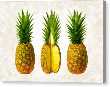 Pineapples Canvas Print by Danny Smythe
