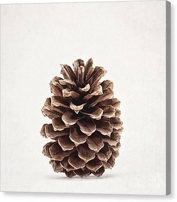 Mountain Cabin Canvas Print - Pinecone Pose 2 by Alison Sherrow