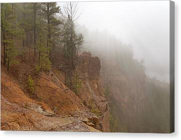 Pines In The Mist - Emerald Park - Arkansas Canvas Print by Jason Politte
