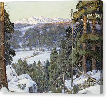 Pines In Winter Canvas Print by George Gardner Symons