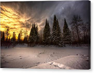 Pinewood River Canvas Print by Jakub Sisak