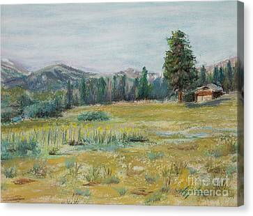 Pingree Park Canvas Print by Mary Benke