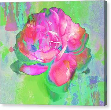 Pink Abstract Canvas Print by Cathie Tyler