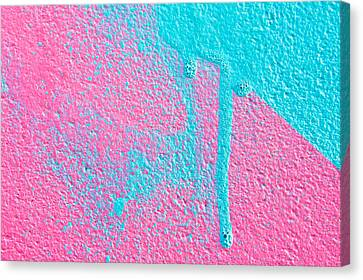 Pink And Blue Paint Canvas Print