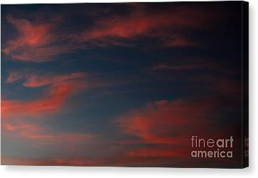 Pink And Blue Skys Canvas Print