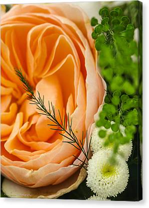 Canvas Print featuring the photograph Pink And Green by Ross Henton