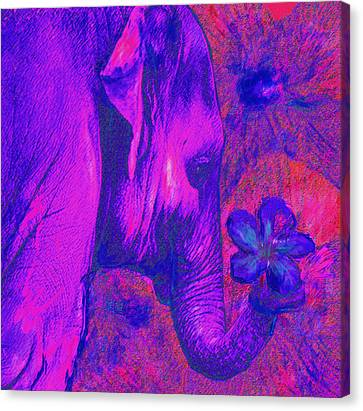 Pink And Purple Elephant  Canvas Print by Jane Schnetlage