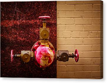 Pink And Rusted Canvas Print