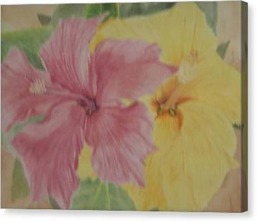 Pink And Yellow Hibiscus Canvas Print by Hilda and Jose Garrancho