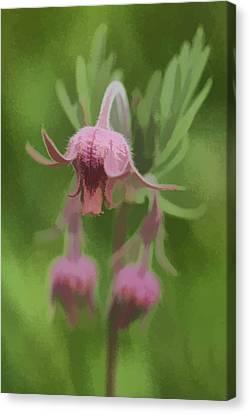 Pink Angel Canvas Print