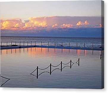 Pink At Dawn Swimming Canvas Print