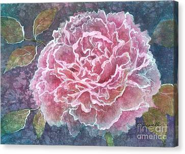 Pink Beauty Canvas Print by Barbara Jewell