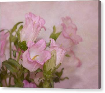 Pink Bell Flowers Canvas Print by Kim Hojnacki