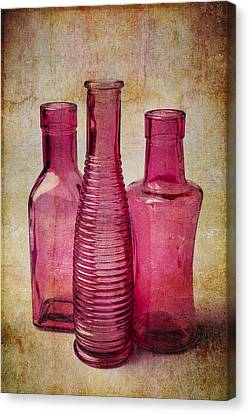 Pink Bottles Canvas Print by Garry Gay