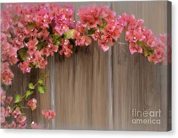 Pink Bougainvillea Canvas Print