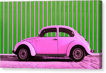 Pink Bug Canvas Print by Laura Fasulo