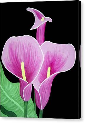 Pink Calla Lilies 1 Canvas Print by Angelina Vick