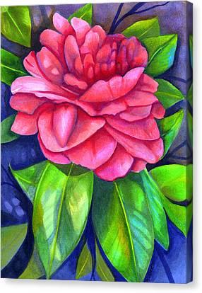 Camellia Canvas Print - Pink Camellia by Elaine Hodges
