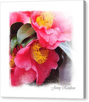 Pink Camellia. Elegant Knickknacks Canvas Print by Jenny Rainbow