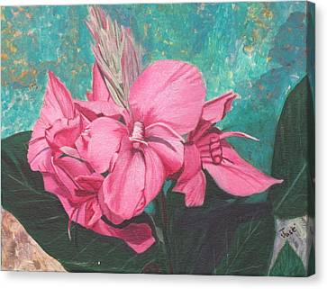 Pink Canna Canvas Print by Hilda and Jose Garrancho