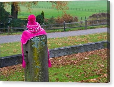 Pink Cap Canvas Print by Hans Engbers
