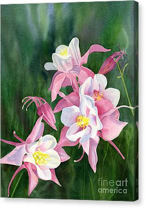 Pink Columbine Blossoms Canvas Print by Sharon Freeman