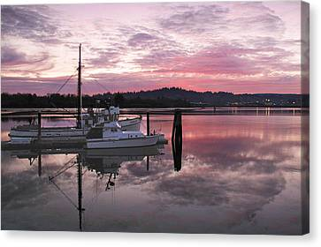 Pink Dawn Canvas Print by Suzy Piatt