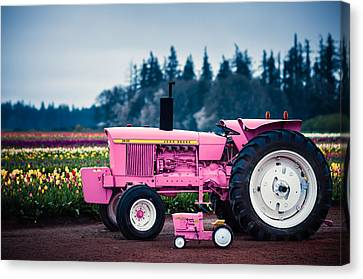 Canvas Print featuring the photograph Pink Deeres by Brian Bonham
