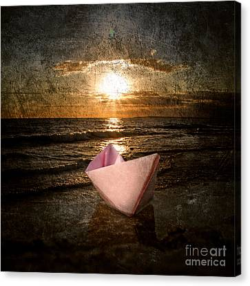 Pink Dreams Canvas Print by Stelios Kleanthous