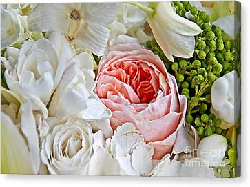 Pink English Rose Among White Roses Art Prints Canvas Print