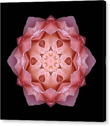 Pink Fall Rose Flower Mandala Canvas Print by David J Bookbinder