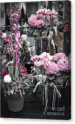 Pink Flower Arrangements Canvas Print by Elena Elisseeva