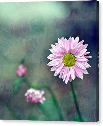 Pink Flower Center Canvas Print