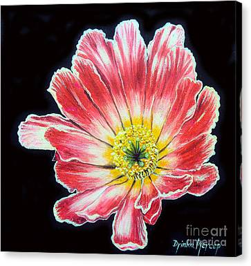 Pink Flower Painting Oil On Canvas Canvas Print by Drinka Mercep