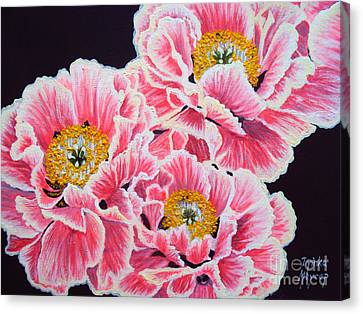 Peony Painting Oil On Canvas No.2 Canvas Print by Drinka Mercep