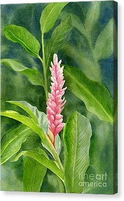 Pink Ginger With Leafy Background Canvas Print