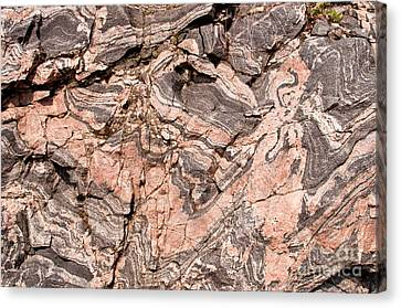 Canvas Print featuring the photograph Pink Gneiss Rock by Les Palenik