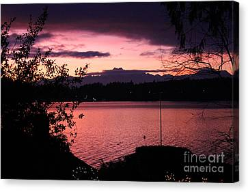 Pink Grapefruit Colored Sunset Canvas Print by Kym Backland