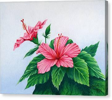 Pink Hibiscus Canvas Print