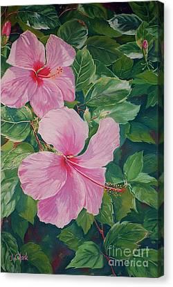 Pink Hibiscus Canvas Print by John Clark
