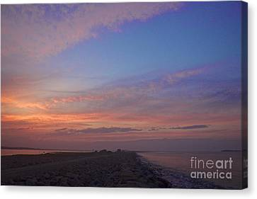 Pink Hues Canvas Print by Amazing Jules