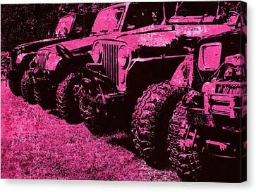 Pink Hues Sticks And Stones... Won't Break My Bones  Canvas Print by Luke Moore