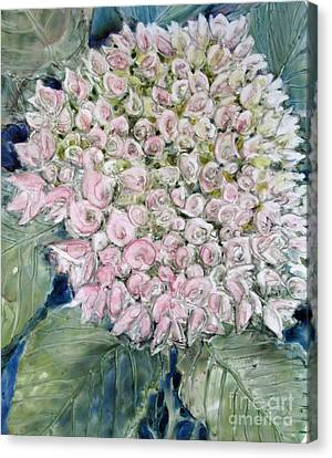Pink Hydrangea Canvas Print by Louise Peardon