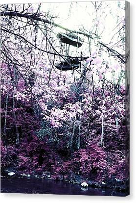 Pink Canvas Print by Kiara Reynolds