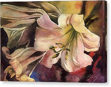 Pink Lilies Canvas Print by Alfred Ng