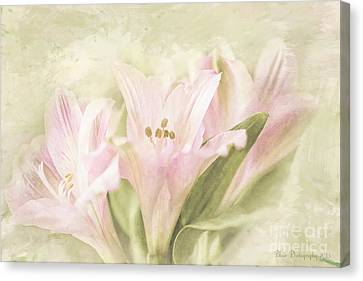 Canvas Print featuring the painting Pink Lilies by Linda Blair