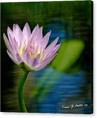 Purple Petals Lotus Flower Impressionism Canvas Print